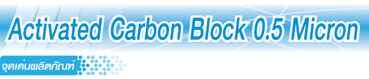 Activated Carbon Block 0.5 Micron