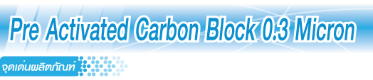 Pre Activated Carbon Block 0.3 Micron